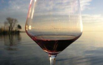 Bardolino e il suo vino